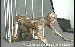 wildcat hanka in spandex