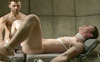 sinful youthful homosexual got his ball tortured