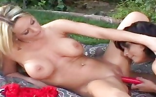 turned on lesbian babes in hot underware play