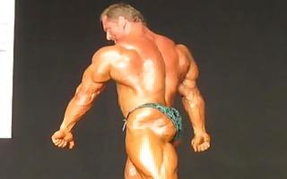 musclebull john: 77108 team universe bodybuilding