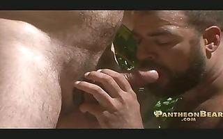 bearded gay bears share one huge meat knob