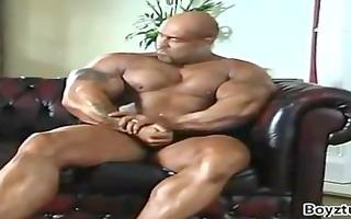 muscledad + bald = oink!