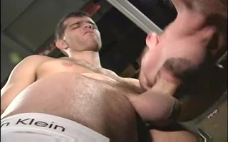 daddy and guy hawt collision sex fuck me....